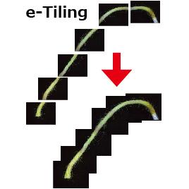 画像連結ソフト
